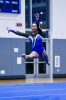 Gallery: Gymnastics NPSL Quad Meets